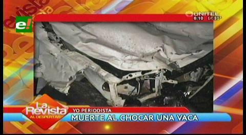 Muere familia completa tras chocar con una vaca cerca de Roboré
