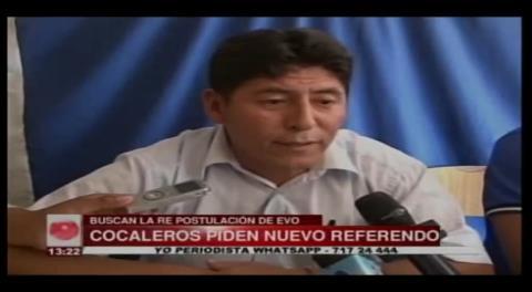 Cocaleros recolectan firmas para un nuevo referéndum a favor de Evo Morales