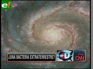 """Una nueva bacteria """"extraterrestre"""" en la Tierra"""