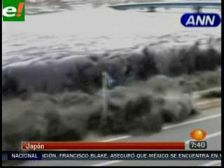 La cara de la tragedia a un mes del tsunami