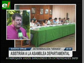 Verdes asistirá a la Asamblea para rechazar la posesión de Rosmeri Gutiérrez