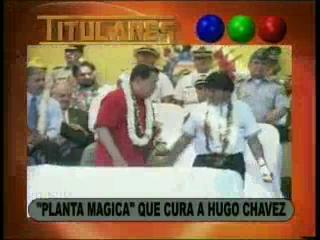 "Chávez: ""Gracias Evo que me mandó chilca, la hierba mágica"""