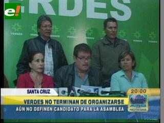 Verdes no termina de organizarse y denuncia golpe de Estado