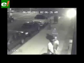 Insólito: Ladrones talan árbol para robarse una bicicleta