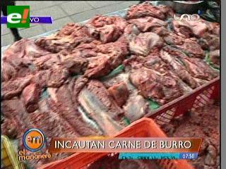 Incautan 1.500 kilos de carne de burro que vendían como llama