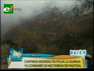 Unas 300 hectáreas de pastizales se perdieron tras incendio en falda La Queñua