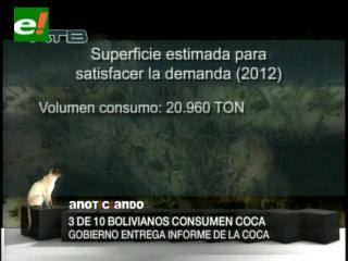 El 67% de la coca se consume en las ciudades de Bolivia y el 33% en el área rural
