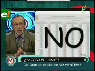 """Del Granado: """"Estamos cabreados, del cuoteo masista, marquemos no en las elecciones judiciales"""""""