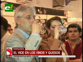 Festival: Vicepresidente destaca calidad de vinos y quesos hechos en Bolivia