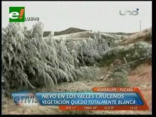 Los valles cruceños sufren los embates de la nevada