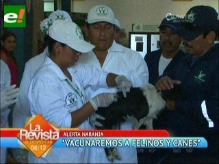 Campaña de vacunación contra la rabia arranca este 17 de noviembre en Santa Cruz
