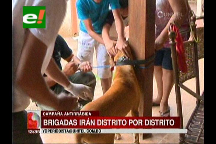 El Sedes logra inmunizar a 202 mil canes en Santa Cruz