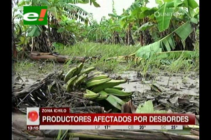 Intensas lluvias: Productores afectados por el desborde del río Ichilo