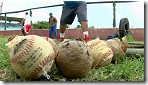 130823170512_cuba_baseball_144x81_bbc_nocredit