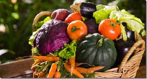 comida-organica-1