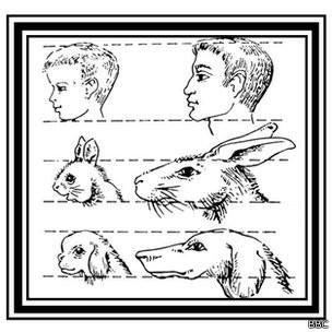 Gráfico de cabezas humanas y animales