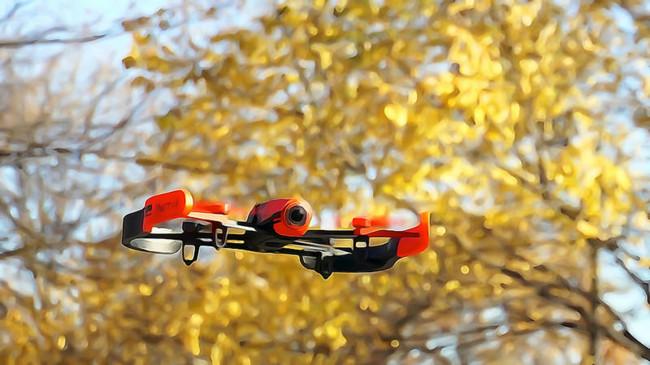 Dron Arboles