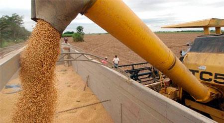Colombia principal destino de exportaciones de Santa Cruz