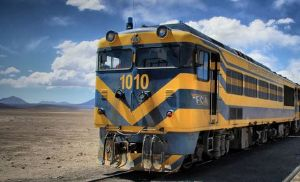 Gill adquiere el 50% de Empresa Ferroviaria Andina