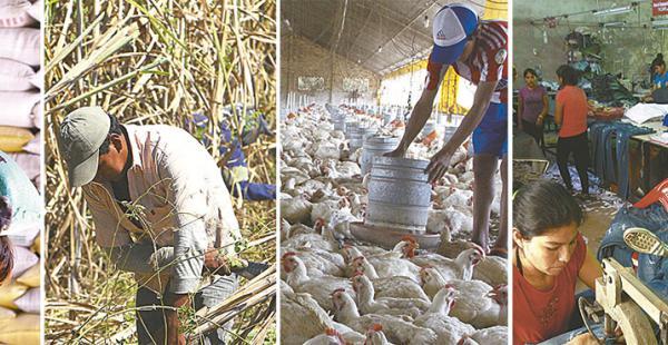 Los productores de arroz, caña de azúcar, los avicultores y las pymes viven días difíciles