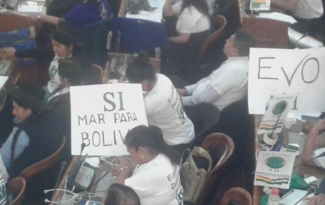 """Senador del MAS: """"Me gustaría que el tema marítimo no se maneje como campaña para la reelección"""""""