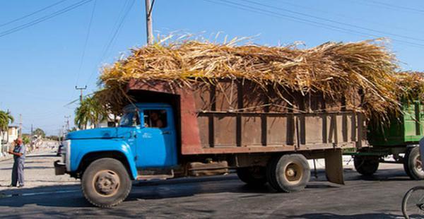 El cargamento era transportada hasta el ingenio azucarero San Aurelio
