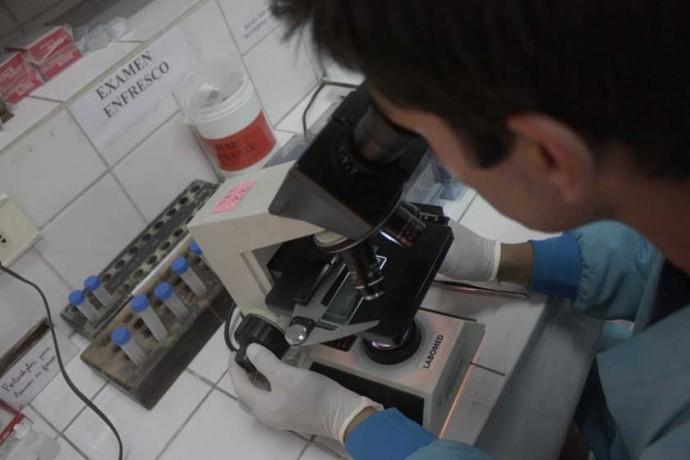 DETECCIÓN. El diagnóstico de VIH es gratuito en los laboratorios de Chuquisaca.