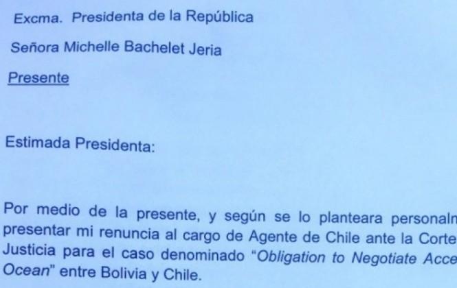 Felipe Bulnes señala que la falta de cohesión es la principal razón de su renuncia