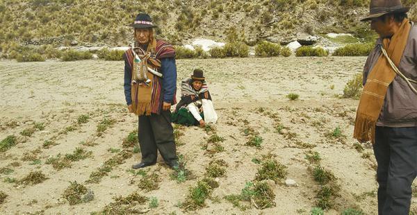 El fenómeno altera el clima en todo el país: hay sequía en las regiones andinas e inundaciones en la amazonía