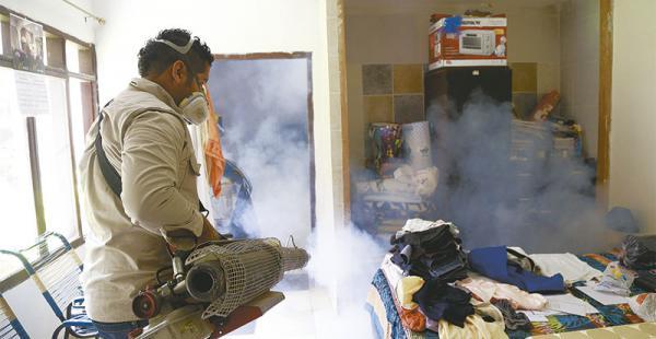 preocupan los mosquitos las autoridades alertan a los vecinos sobre los criaderos Personal delSedes fumigó los domicilios del barrio Brígida, donde se detectó dos infestados