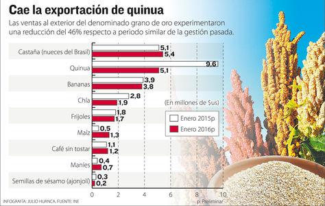 Infografía: Julio Huanca-La Razón/Fuente: INE