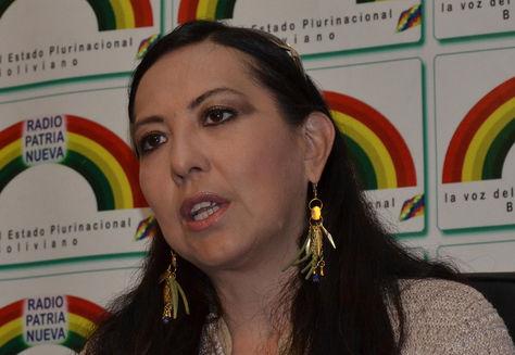La viceministra de Política Tributaria, Susana Ríos. Foto: elbolivianoenvivo.com