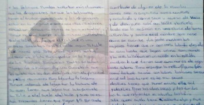 En la imagen se puede ver parte del examen de la niña boliviana que estudia en una pequeña localidad de Mar del Plata. La imagen del fondo es referencial