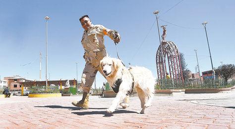 Pareja. Vladimir Chino lleva al can en la Plaza del Minero, en la zona SantiagoII, de El Alto.