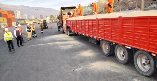 Los camiones con la soya boliviana