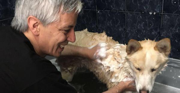 García Linera se dio tiempo para asear a sus perros
