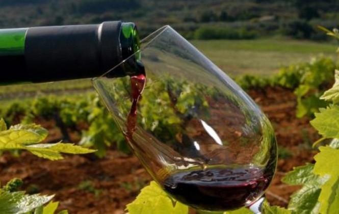 En 10 años Bolivia exportó vino por $us 440 mil e importó cerca de $us 30 millones