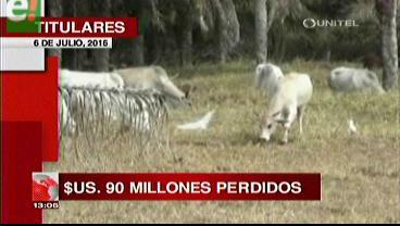Titulares de TV: Anapo informó que el 50% de los cultivos de verano fueron afectados por la sequía