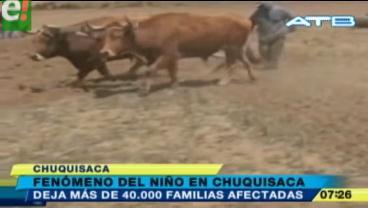 """Fenómeno """"El Niño"""" afectó a más de 40 mil familias chuquisaqueñas"""