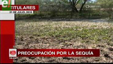 Titulares de TV: Ocho municipios se declaran en emergencia por las pérdidas de cultivos