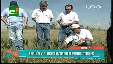 El agro pide reprogramación de deudas por aguda sequía
