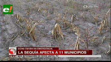 Sequía afecta a once municipios y las pérdidas superan los $us 123 millones