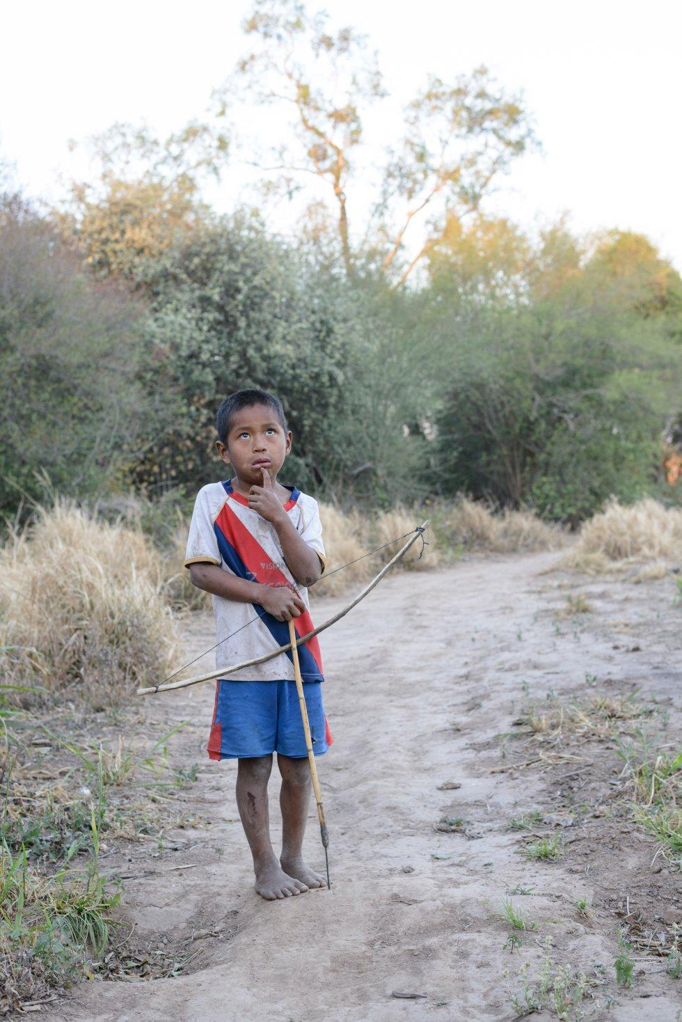 Las medidas cautelares ordenadas por la CIDH (Comisión Interamericana de Derechos Humanos) a Paraguay supone que el Estado deberá proteger los bosques, titular parte del territorio ancestral indígena, y prevenir contactos no deseados en ese territorio reconocido a favor de éste pueblo. Pero la petición, aún en trámite, no habla sólo de protección sino de restitución de tierras, reclamadas por los Ayoreo Totobiegosode hace más de veinte años.rn