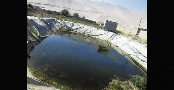 En Azapa se construyen lagunas para recibir agua, que llega del Lauca