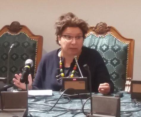 La responsable de justicia fiscal para Oxfam, Susana Ruiz Rodríguez, durante su explicación ante la comisión legislativa. Foto: Cámara de Diputados