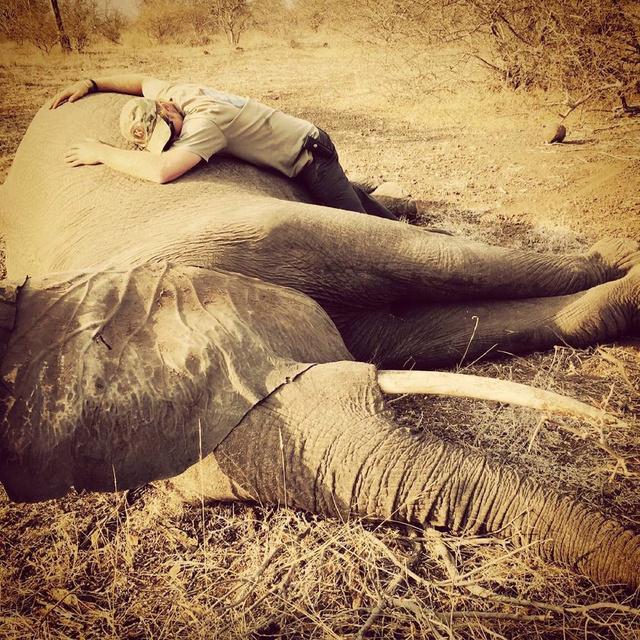 El príncipe Harry abrazando a un elefante en su visita a Sudáfrica el pasado verano.