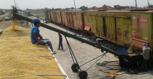 El maíz que llegó de Argentina fue descargado en la estación de Guaracahi
