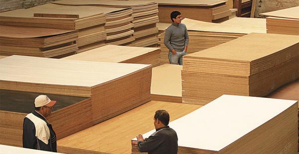 El sector forestal es uno de los más golpeados por el ingreso de muebles brasileños a un menor costo. Esperan protección para el mercado local
