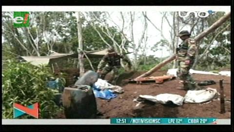 Erradican 500 hectáreas de coca ilegal en la localidad de San Germán