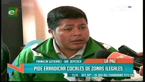 Adepcoca pide al Gobierno erradicar los cocales ilegales en La Paz